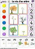 logico-mathematiques: la vie d'un arbre
