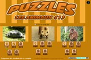 Puzzle Animaux : tortue, ours, singe